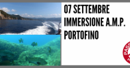 IMMERSIONI AMP PORTOFINO